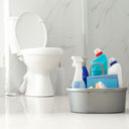 Comment nettoyer les toilettes ?