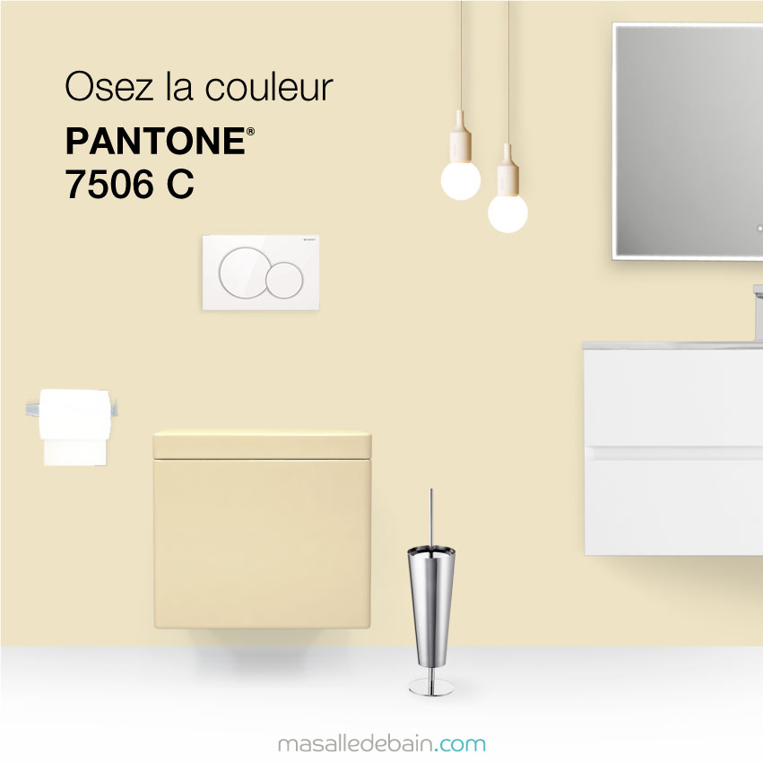 wc couleur beige simple download by tablet desktop original size back to ides de wc couleur. Black Bedroom Furniture Sets. Home Design Ideas